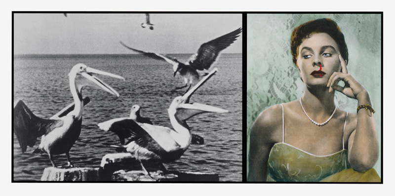 Image: Pelicans Staring at Woman with Nose Bleeding, 1984, John Baldessari / Photo courtesy of John Baldessari