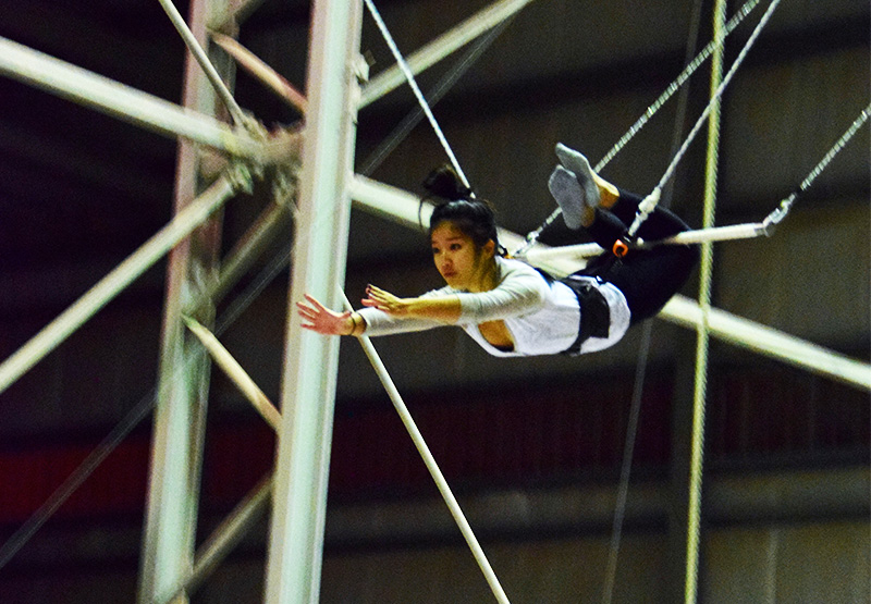 Image: Flying circus trapeze art