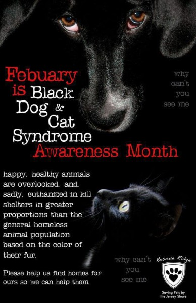 black dog syndrome month