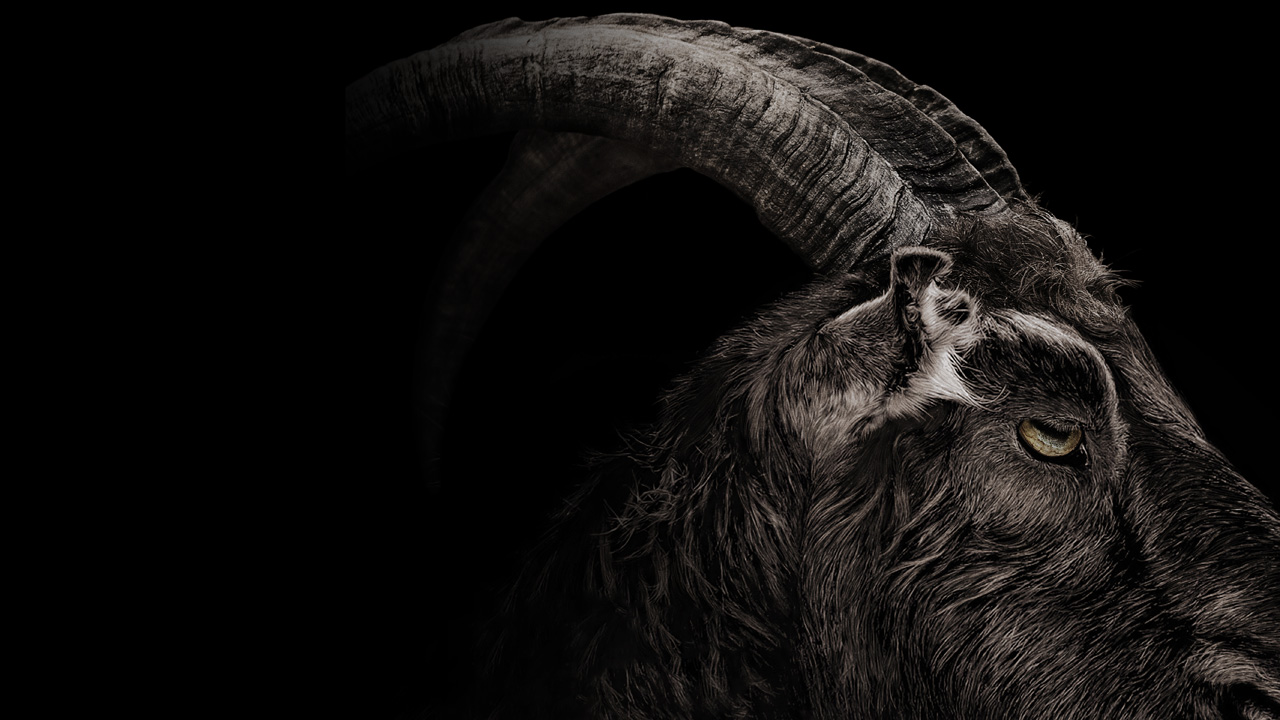 The Witch Black Phillip Movie Review
