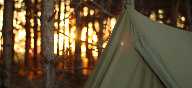 Wooded Tent / Shutterstock