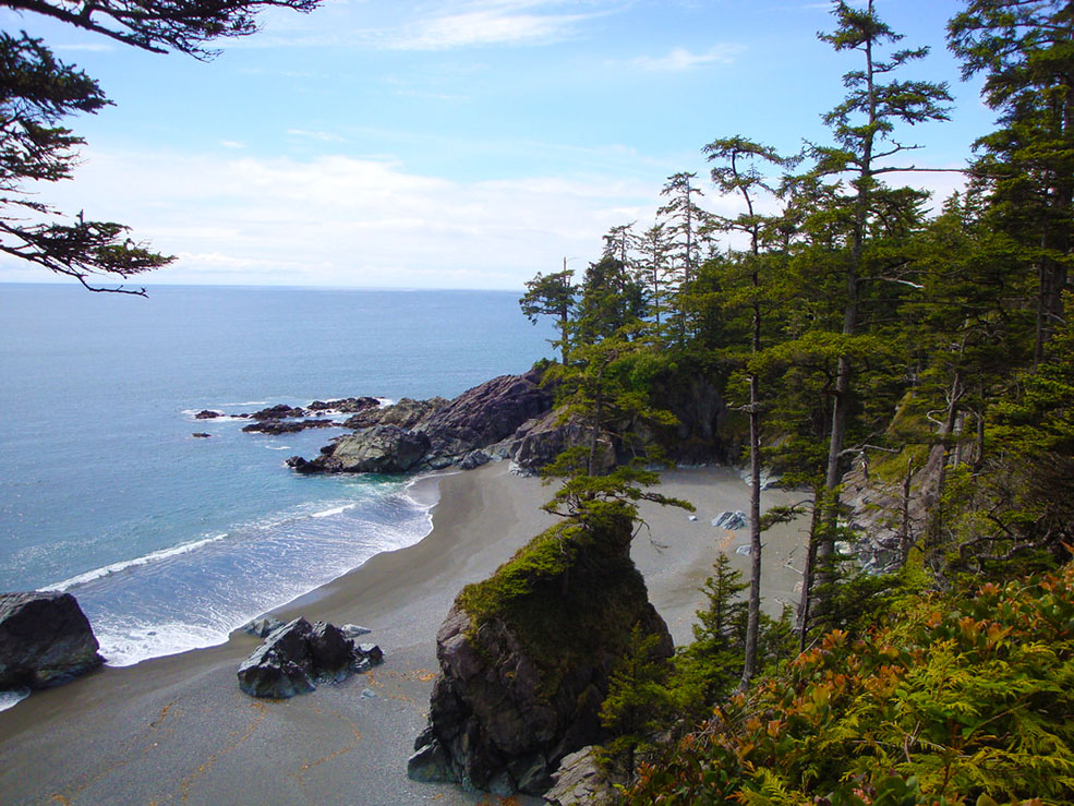 A view from the West Coast Trail on Vancouver Island (Su-Laine Yeo Brodsky/Flickr)