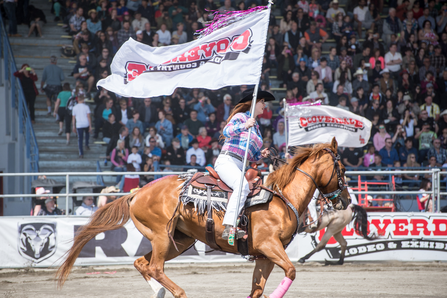 Image: Cloverdale Rodeo and Country Fair