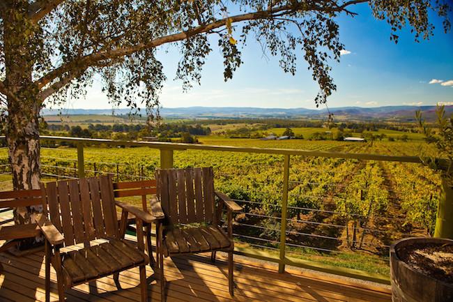 Australian vineyard/Shutterstock