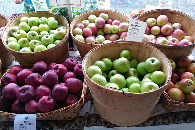 Fort Langley Village Farmers' Market / Facebook