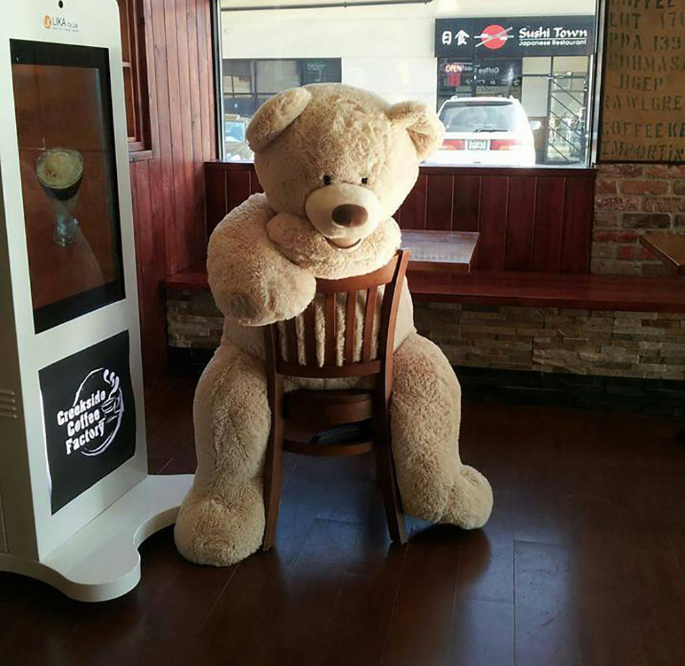 Teddy bear Bearamel Macchiato loved to hang around in the coffee shop (Facebook)