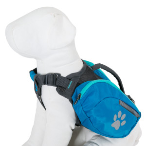 Top Paw Reflective Backpack, courtesy PetSmart.