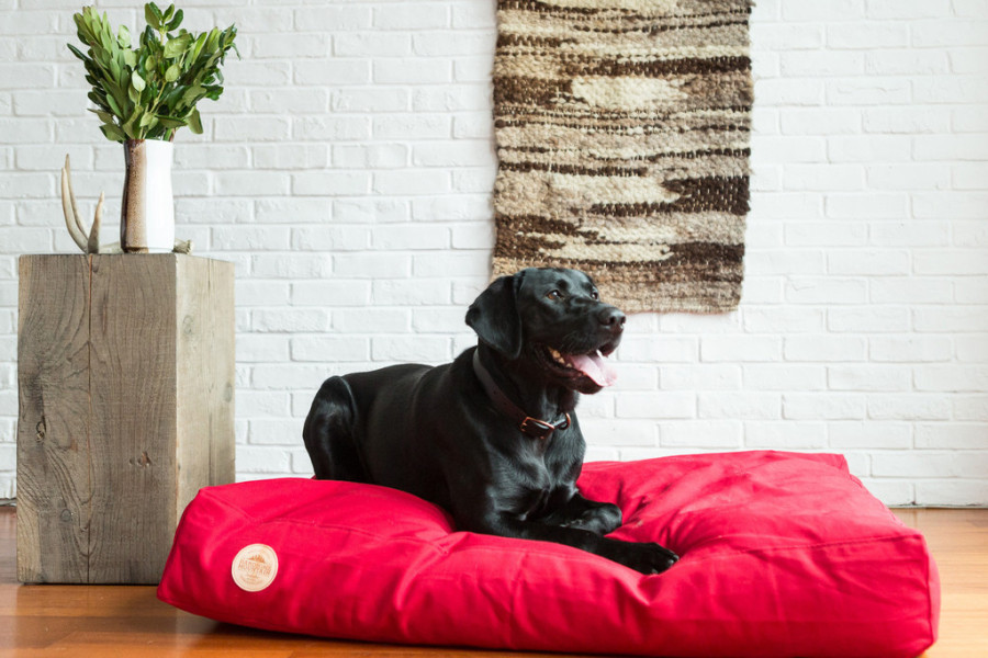 Vancouver's Handsome Mountain uses recycled/upcycled fabrics for most of its dog beds. (Handsome Mountain)