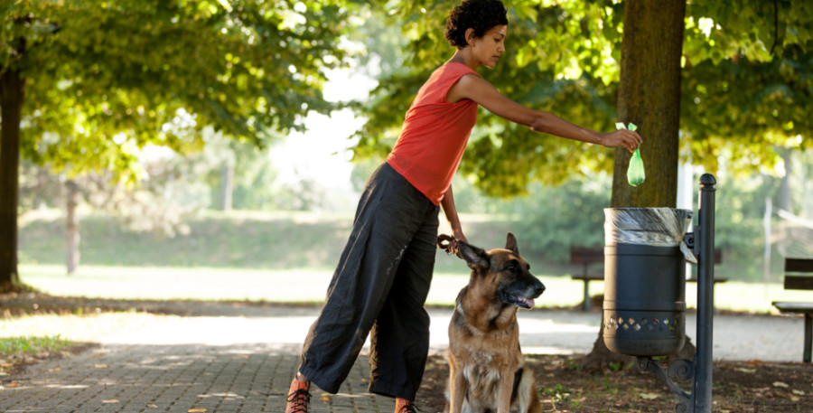 Image: Woman disposing of dog poop, via Shutterstock
